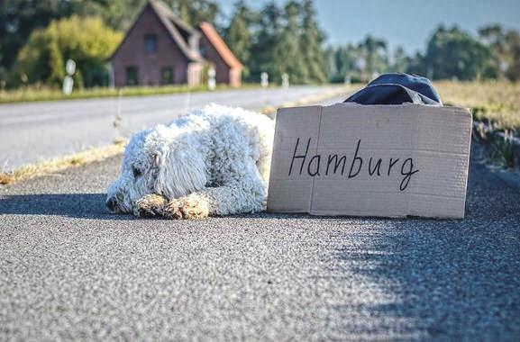 Freizeitaktivitäten in Hamburg | Gedicht schreiben